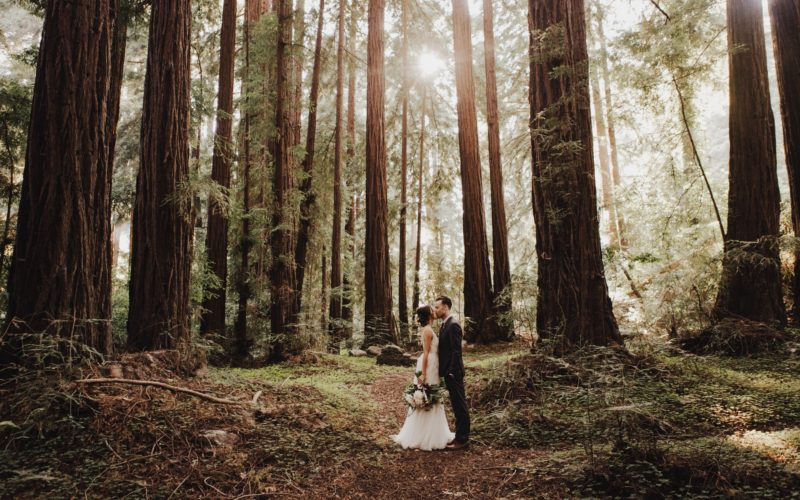 Day (307). A Big Sur Wedding